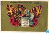 Papillons - femmes