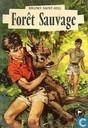 Forêt sauvage