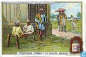 Indische Volkstypen