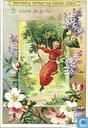 Blumen-Jahreslauf