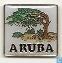 Aruba Dividiviboom
