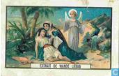 Histoire biblique TXT out, gold brown