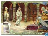 Nala und Damayanti