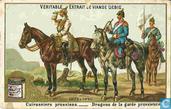 Das deutsche Heer V