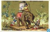 Elefantengeschichte