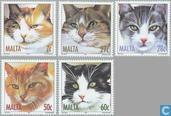 2004 Katten (MAL 327)