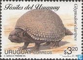 Prehistorische Fauna van Uruguay