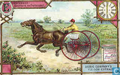 Spannen, paarden, koetsen