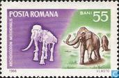 Prehistorische Fauna