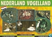 U000246 - Nederland Vogelland