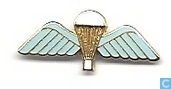 Airborne Para Regiment Wings