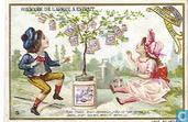 Das Märchen vom Extract-Baum