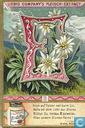 Blumen-Poesie / große Letter LIEBIG