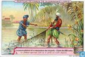 Der arme Fischer und der Beherrscher der Gläubigen