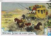 Bilder aus Transvaal