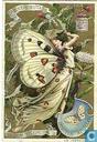 Schmetterlinge II Frauengestalten
