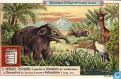 Landschaften I geologische Perioden