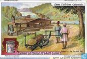 Bilder aus Ost-Afrika