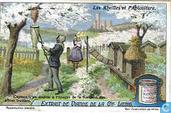 Zur Geschichte der Bienenwirtschaft