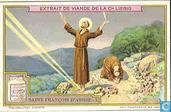 St. Franziskus von Assisi