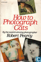 How to photograph cats