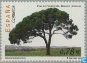 Bomen