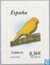 Wildlife - Bird