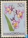 Flowers Series. Multicolored flowers