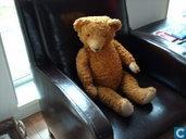 Wertvollster Artikel - Oude antieke teddybeer