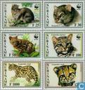 WWF-Small Cat and Jaguarundi