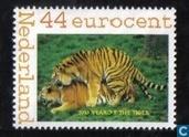 Jaar van de tijger