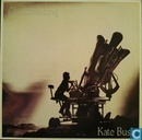 Vinyl records and CDs - Bush, Catherine - Cloudbusting