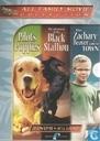 DVD / Vidéo / Blu-ray - DVD - When Zachary Beaver Came to Town