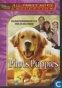 Pilot's puppies