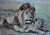 Katachtigen - Leeuw met jongen