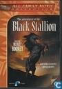 The Adventures of the Black Stallion