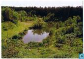 BELFELD, Vennetje in natuurgebied Maalbeek