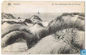 Knocke - Un Coin pittoresque dans les Dunes