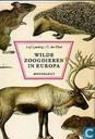 Wilde zoogdieren in europa