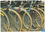 Bicycles (7 503)