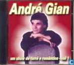 Um show de forró e romântico - vol 1