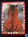 Wereld Natuur Fonds, tijger