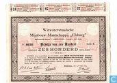 """Kostbaarste item - Witwatersrandsche Mijnbouw-maatschappij """"Elsburg"""", Bewijs van een aandeel f 600,=, 1889"""