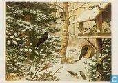 Voor het Kind 1981 - Vogels in de winter