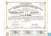 Kostbaarste item - Eerste Nederlandsch-Transvaalsche Goudmijn-Maatschappij, Aandeel 12 Gulden, 1889