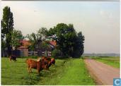 Oude Broekweg met boerderij