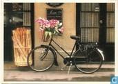 Les bicyclettes no 22
