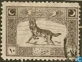 Wolf Boz Kurd
