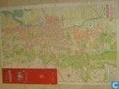 Haarlem met omgeving