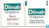 Sachets et étiquettes de thé - Dilmah - Berry Explosion
